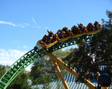Экскурсия в парк развлечений Busch Gardens, Tampa