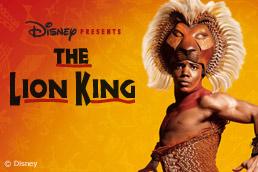 Шоу The Lion King — Король Лев