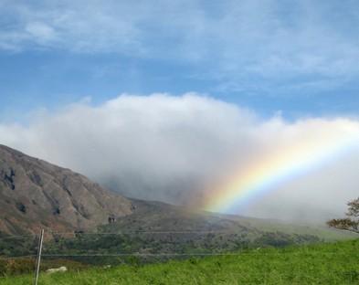 Экскурсии на остров Мауи из Оаху (однодневная поездка)