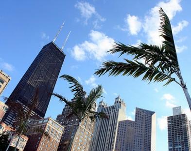 Обзорная экскурсия по Чикаго с подъемом на смотровую площадку John Hancock,  8 часов