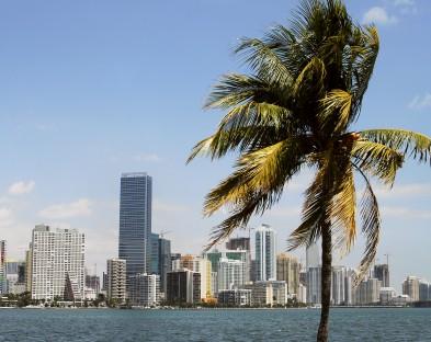 Нью-Йорк — Майами (хит продаж!)